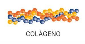 proteina colageno verisol